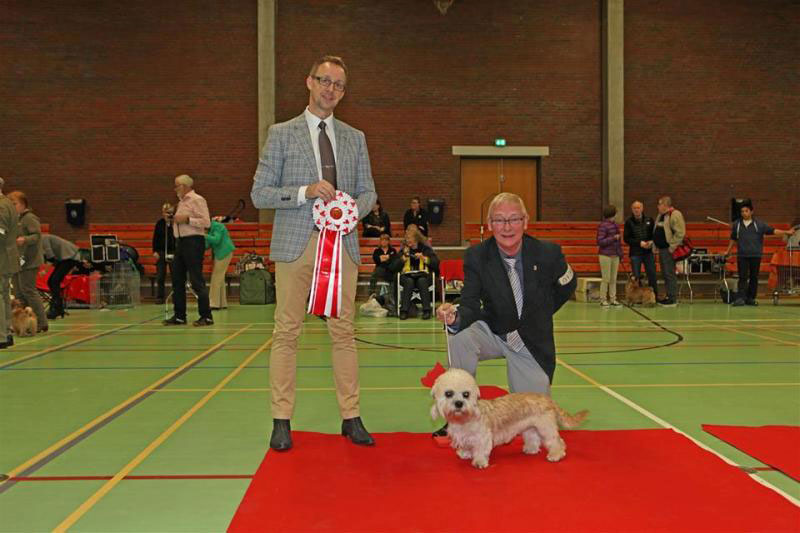 2014-04-12-DTK-Billund-Hobbie-BIS-Puppy-1-judge-Helge-Kvivesen-No